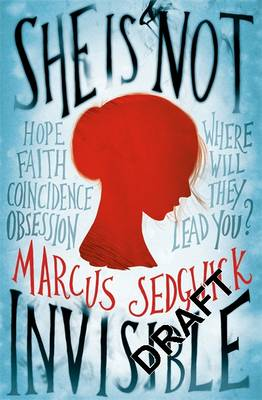 She Is Not Invisible (Hardback)