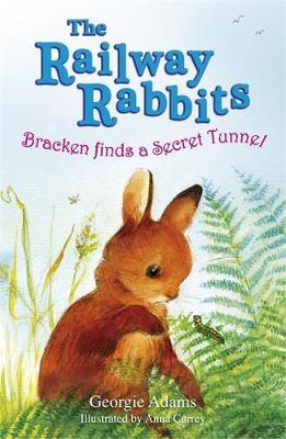 Bracken Finds a Secret Tunnel: Book 5 - Railway Rabbits 5 (Paperback)
