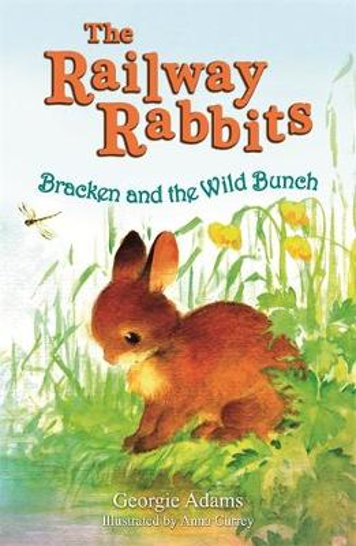 Railway Rabbits: Bracken and the Wild Bunch: Book 11 - Railway Rabbits (Paperback)