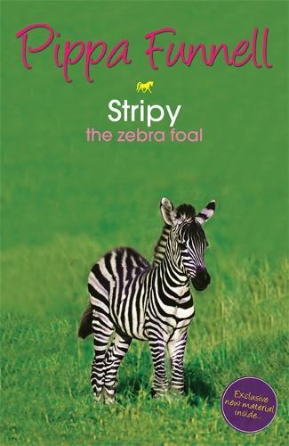 Tilly's Pony Tails: Stripy the Zebra Foal: Book 17 - Tilly's Pony Tails (Paperback)