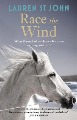 The One Dollar Horse: Race the Wind: Book 2 (Hardback)