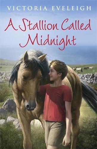 A Stallion Called Midnight (Paperback)