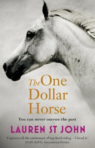 The One Dollar Horse: Book 1 - The One Dollar Horse (Paperback)