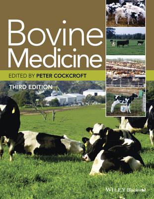 Bovine Medicine (Hardback)