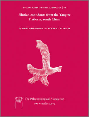 Special Papers in Palaeontology: Silurian Conodonts from the Yangtze Platform, South China - Special Papers in Palaeontology (Paperback)