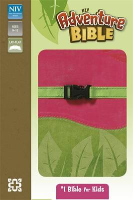 NIV Adventure Pink and Green Soft-Tone Bible (Paperback)