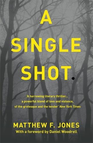 A Single Shot (Paperback)