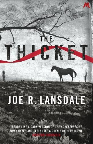 The Thicket (Paperback)