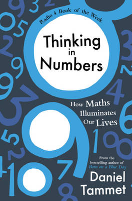 Thinking in Numbers: How Maths Illuminates Our Lives (Hardback)