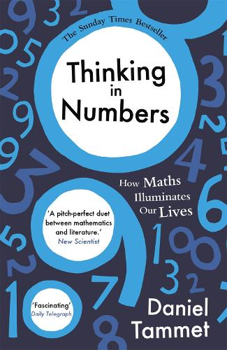 Thinking in Numbers: How Maths Illuminates Our Lives (Paperback)