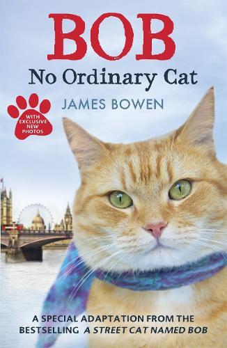 Bob: No Ordinary Cat (Paperback)