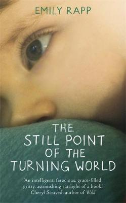 The Still Point of the Turning World: A Mother's Story (Hardback)
