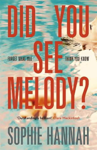 Did You See Melody? (Hardback)