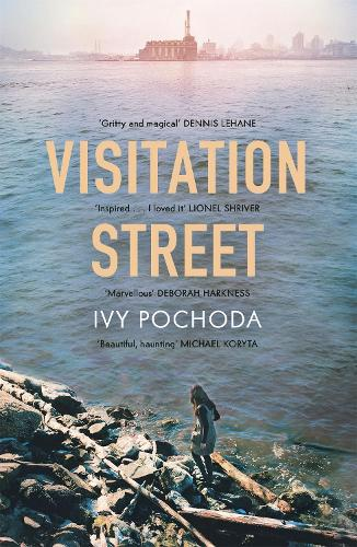 Visitation Street (Paperback)
