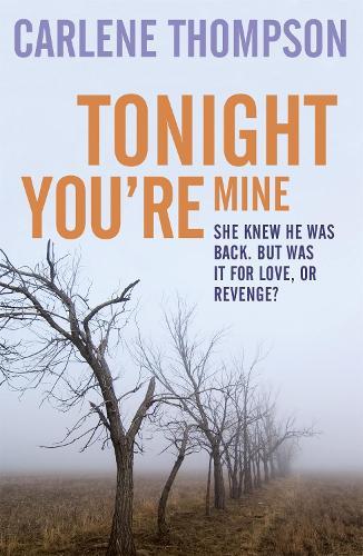 Tonight You're Mine (Paperback)
