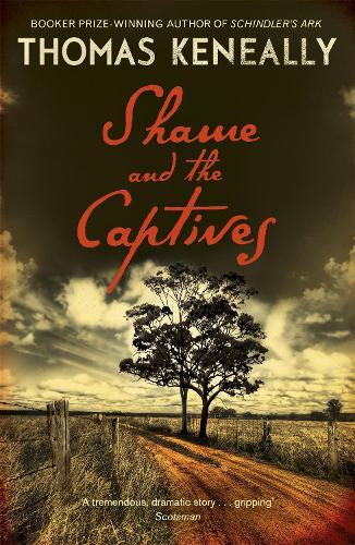 Shame and the Captives (Paperback)