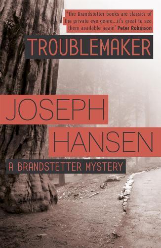 Troublemaker: Dave Brandstetter Investigation 3 - Dave Brandstetter (Paperback)