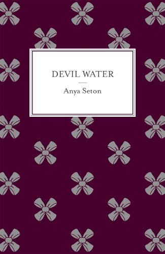 Devil Water (Paperback)