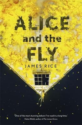 Alice and the Fly (Hardback)