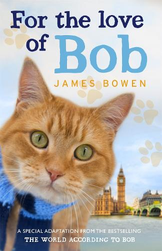 For the Love of Bob (Paperback)