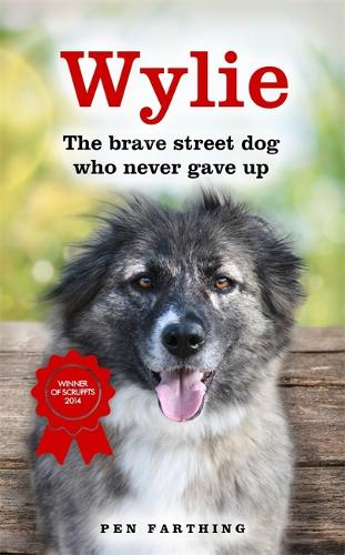 Wylie: The Brave Street Dog Who Never Gave Up (Paperback)