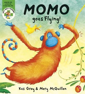 Get Well Friends: Momo Goes Flying - Get Well Friends (Hardback)