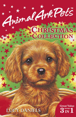 Animal Ark Pets Christmas Collection (3 in 1) (Paperback)