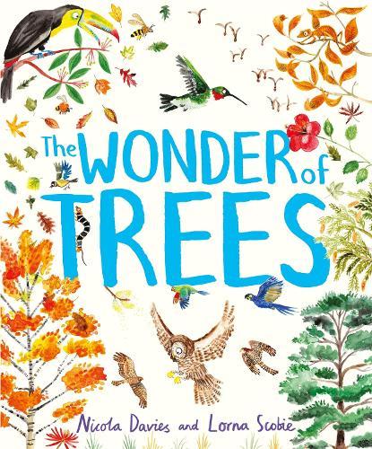 The Wonder of Trees (Hardback)