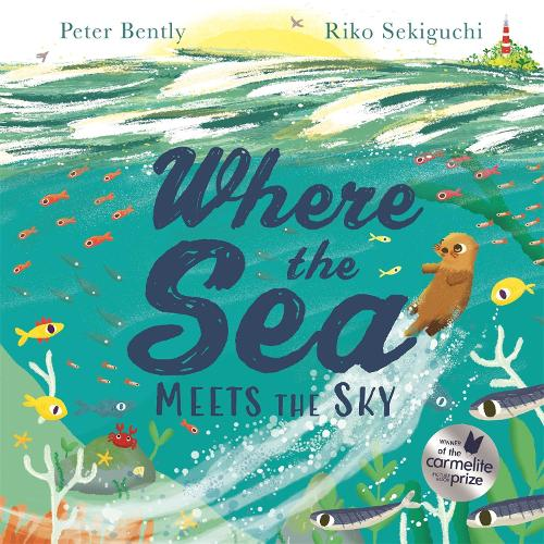 Where the Sea Meets the Sky (Paperback)