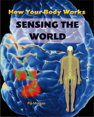 Sensing the World - How Your Body Works 6 (Hardback)