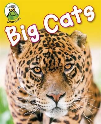 Big Cats - Leapfrog Learners (Hardback)