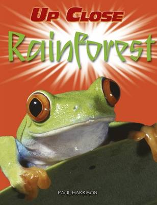 Rainforest (Paperback)