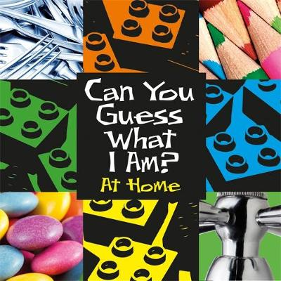 Can You Guess What I Am?: At Home - Can You Guess What I Am? (Hardback)