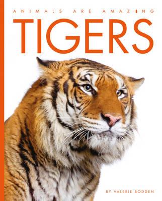 Tigers - Animals are Amazing (Hardback)