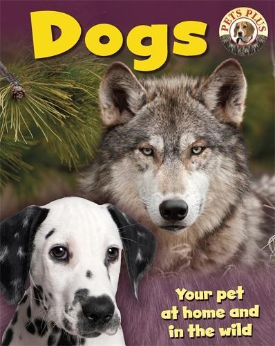 Dogs - Pets Plus (Paperback)