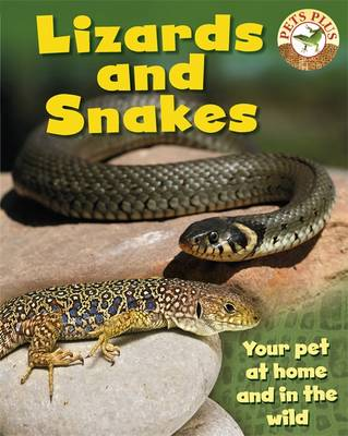 Lizards and Snakes (Paperback)