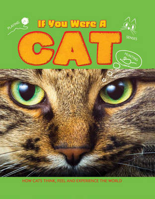 Cat - If You Were a 1 (Hardback)