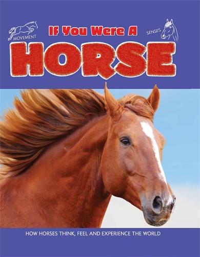If You Were a Horse - If You Were a (Hardback)
