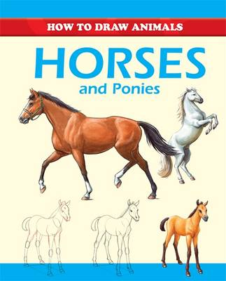 Horses and Ponies (Paperback)