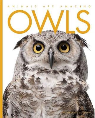 Owls - Animals are Amazing 9 (Hardback)