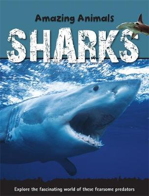 Sharks (Paperback)