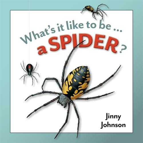 A Spider? - What's It Like to Be (Hardback)