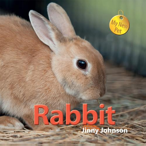 My New Pet: Rabbit - My New Pet (Hardback)