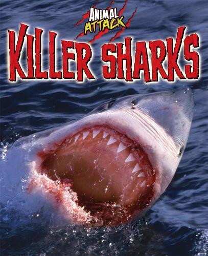 Animal Attack: Killer Sharks - Animal Attack (Paperback)