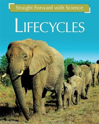 Straight Forward with Science: Life Cycles - Straight Forward with Science (Hardback)