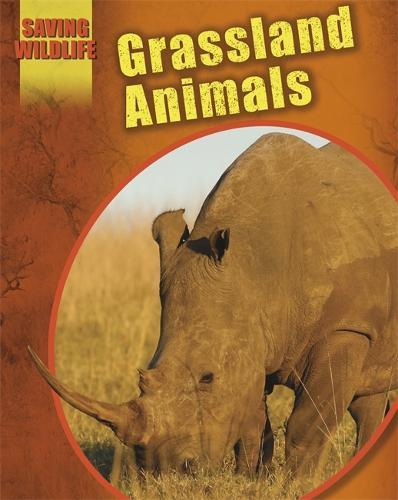 Saving Wildlife: Grassland Animals - Saving Wildlife (Paperback)