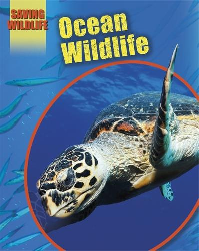 Saving Wildlife: Ocean Wildlife - Saving Wildlife (Paperback)