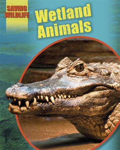 Saving Wildlife: Wetland Animals - Saving Wildlife (Paperback)