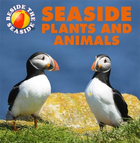 Beside the Seaside: Seaside Plants and Animals - Beside the Seaside (Hardback)