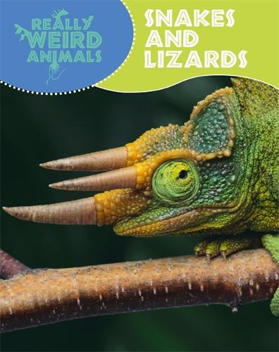 Really Weird Animals: Snakes and Lizards - Really Weird Animals (Paperback)